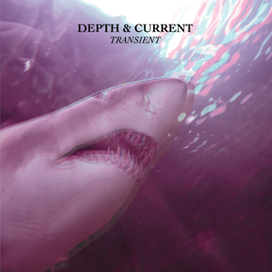 Depth & Current - Transient