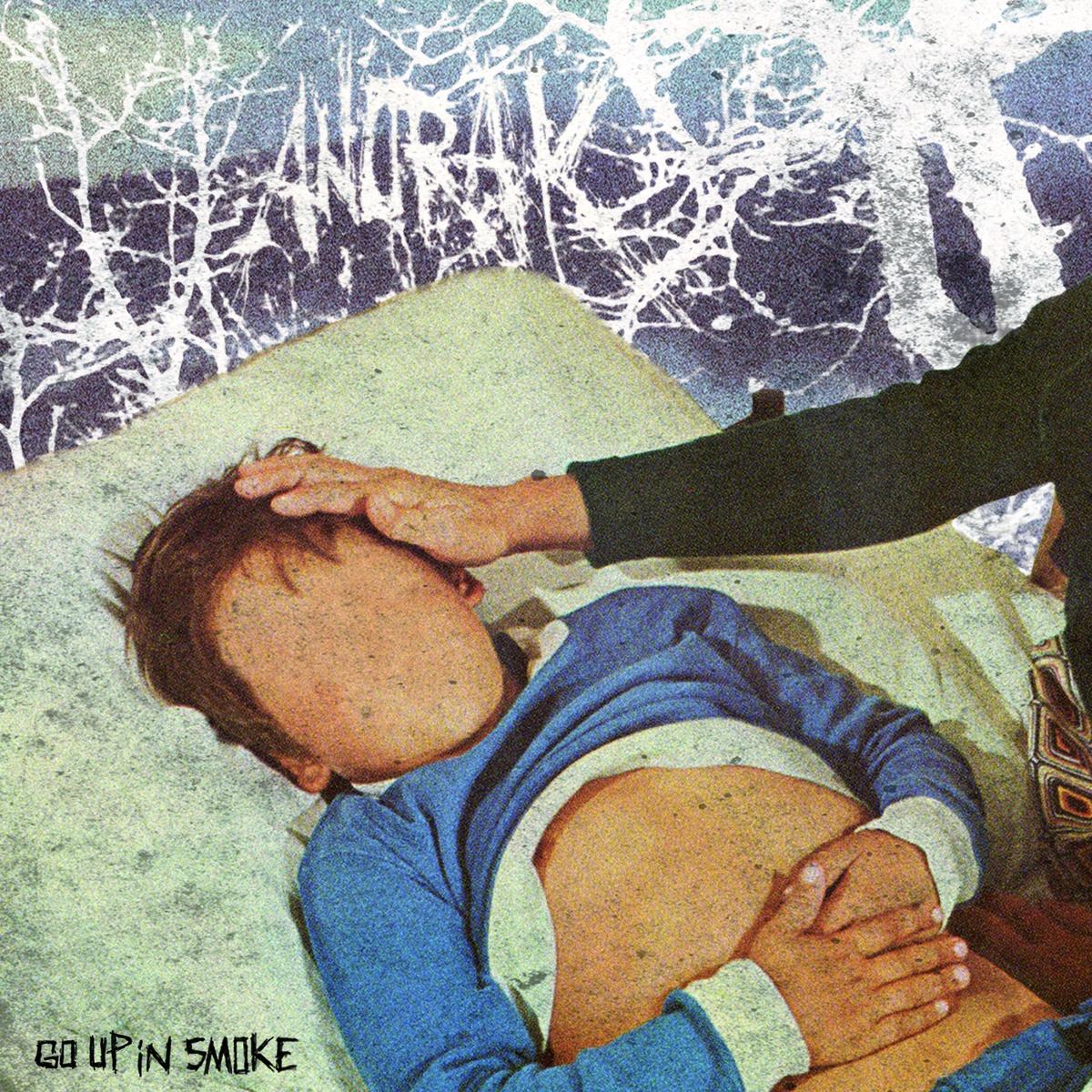 ANORAK Go up in smoke LP