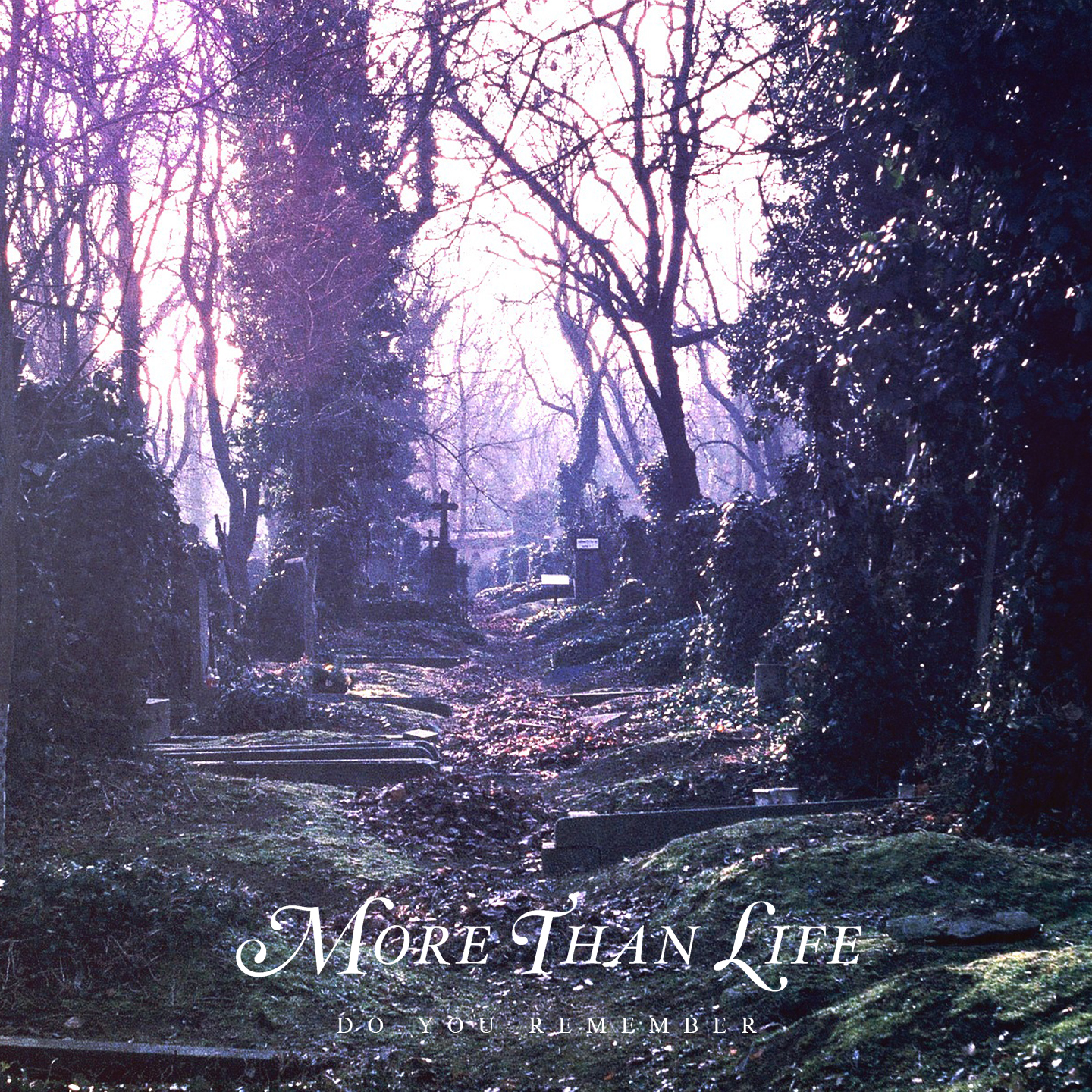 More Than Life - Do You Remember