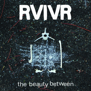 RVIVR - The Beauty Between LP
