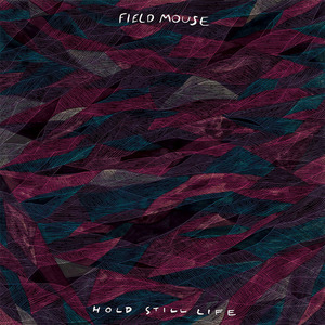 Field Mouse - Hold Still Life
