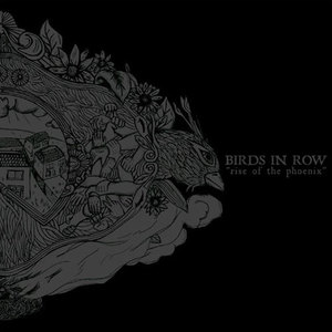 BIRDS IN ROW Rise of the phoenix 7