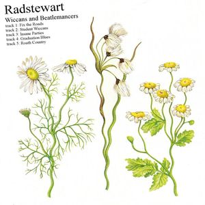 Radstewart - Wiccans And Beatlemancers CD