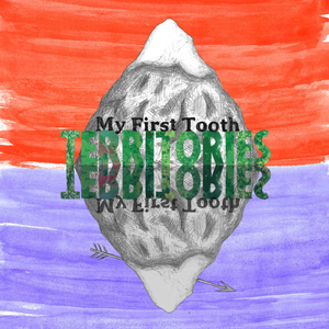 My First Tooth - Territories CD