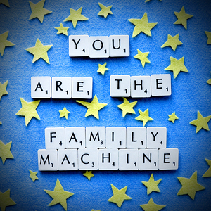 The Family Machine - You Are The Family Machine CD