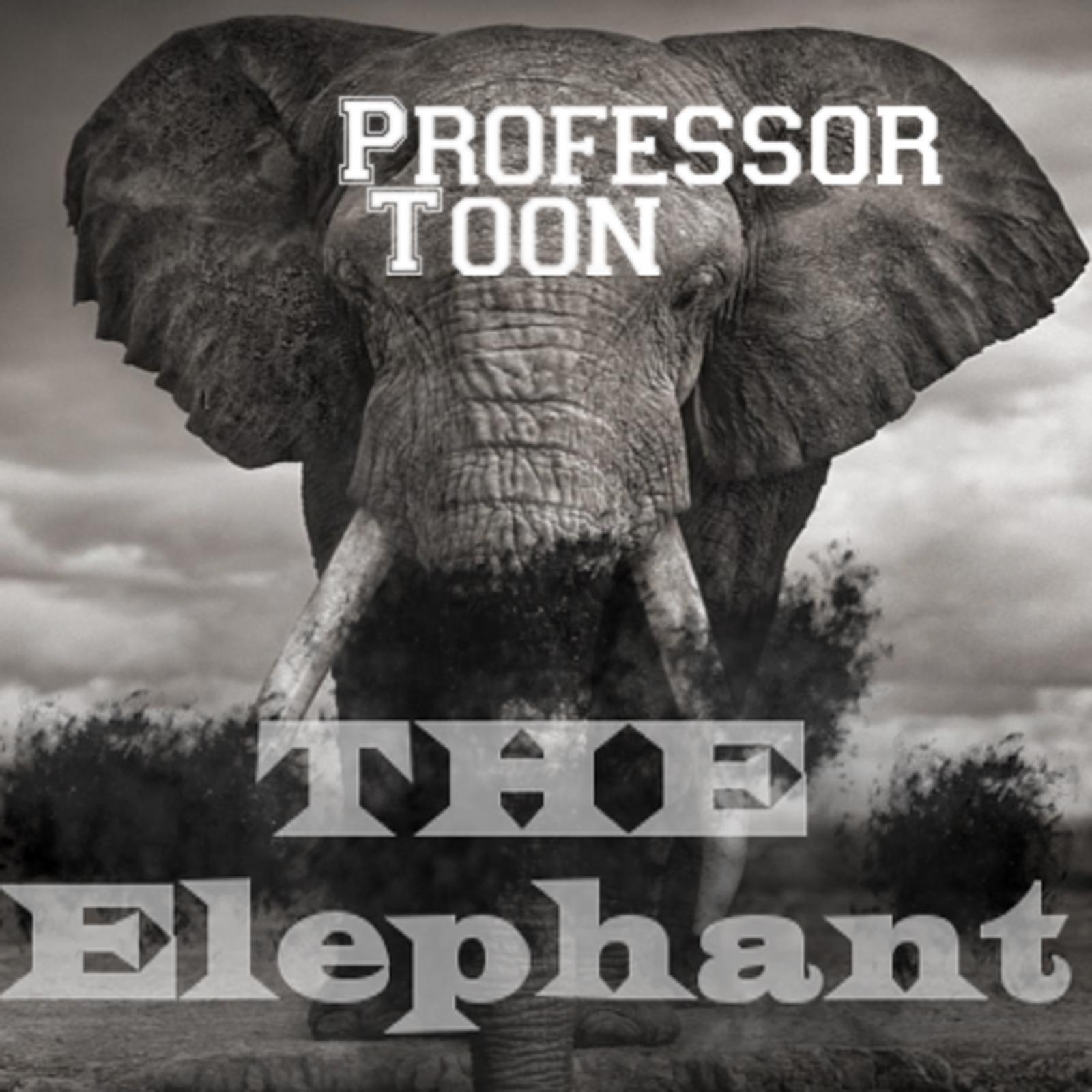 Professor Toon -