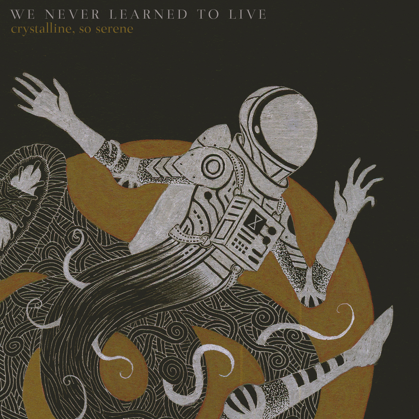 We Never Learned To Live - crystalline, so serene digital single