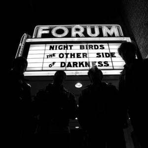 Night Birds - The Other Side of Darkness LP