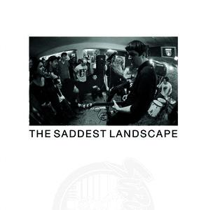 Pet Symmery / The Saddest Landscape - 7 Inch
