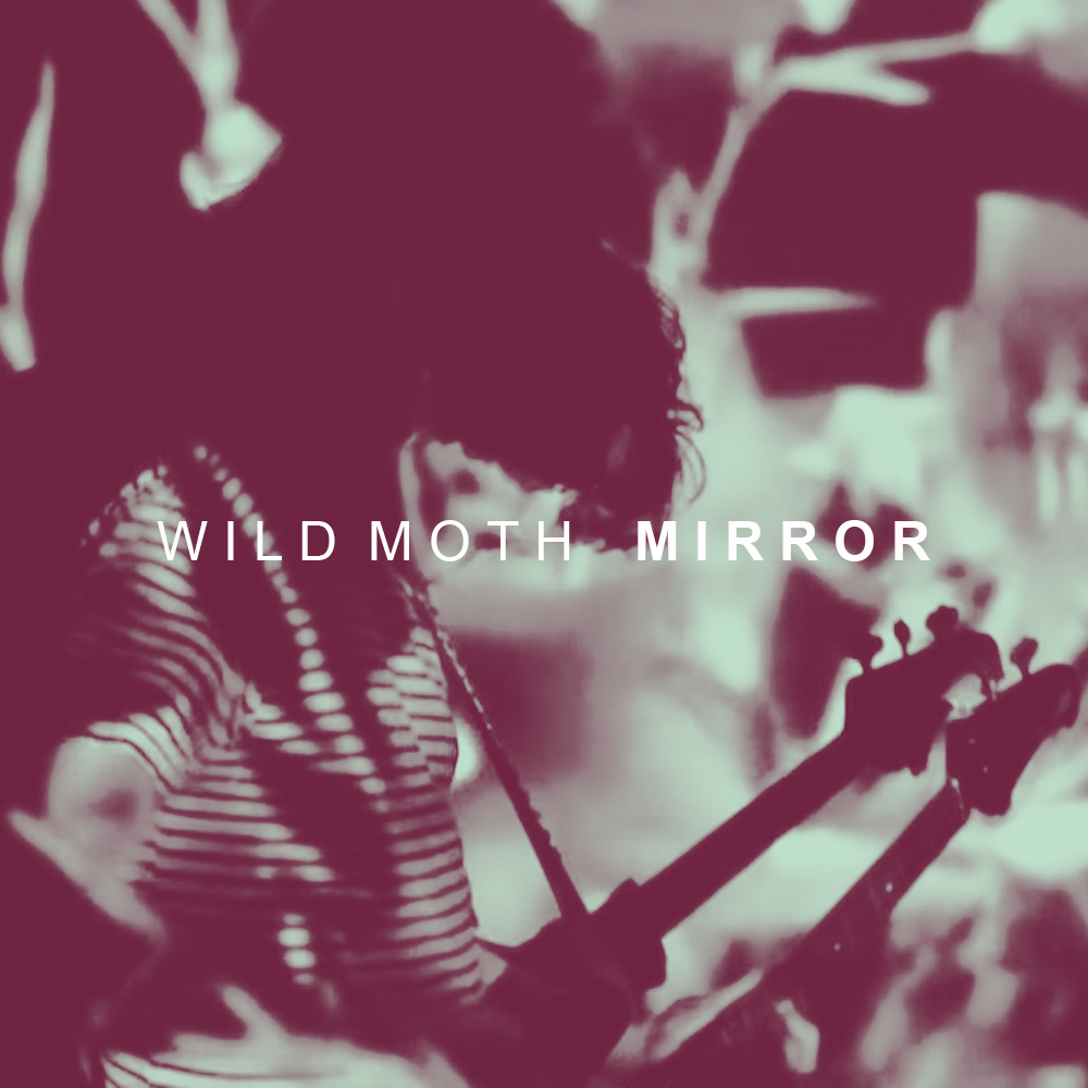 Wild Moth -