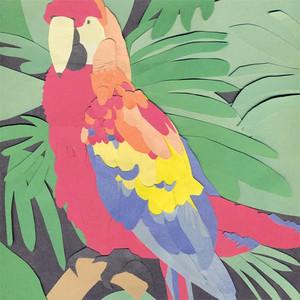 Algernon Cadwallader - Parrot Flies LP