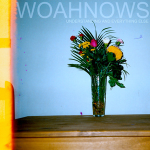 Woahnows - Understanding and Everything Else LP