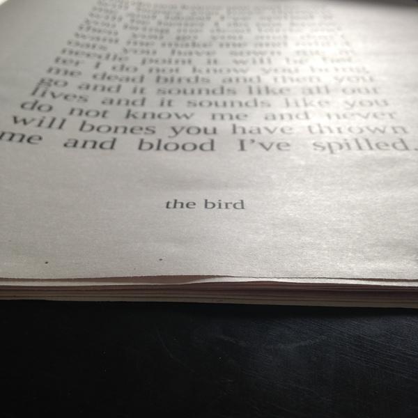 Kathryn Joseph \\ Exclusive Artwork and Lyrics Newsprint booklet