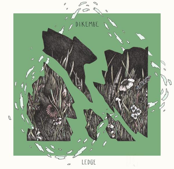 Dikembe - Ledge 7