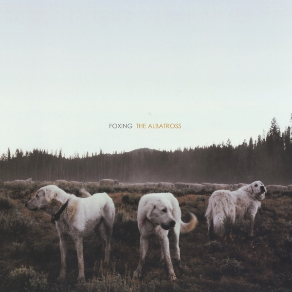 Foxing - The Albatross LP