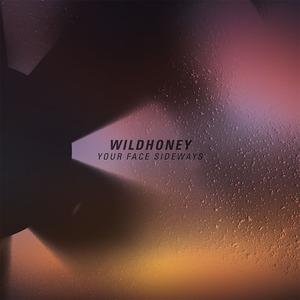 Wildhoney- Your Face Sideways