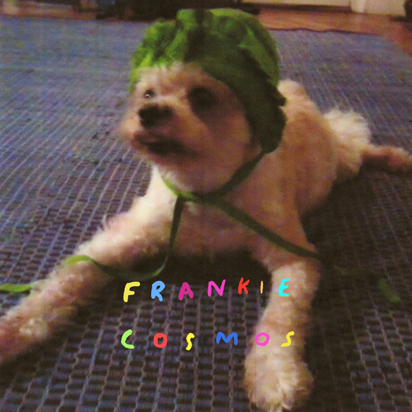 Frankie Cosmos 'Zentropy' (LP/CD/MP3)
