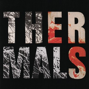 The Thermals - Desperate Ground LP