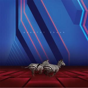 Adebisi Shank - This is the Second Album....