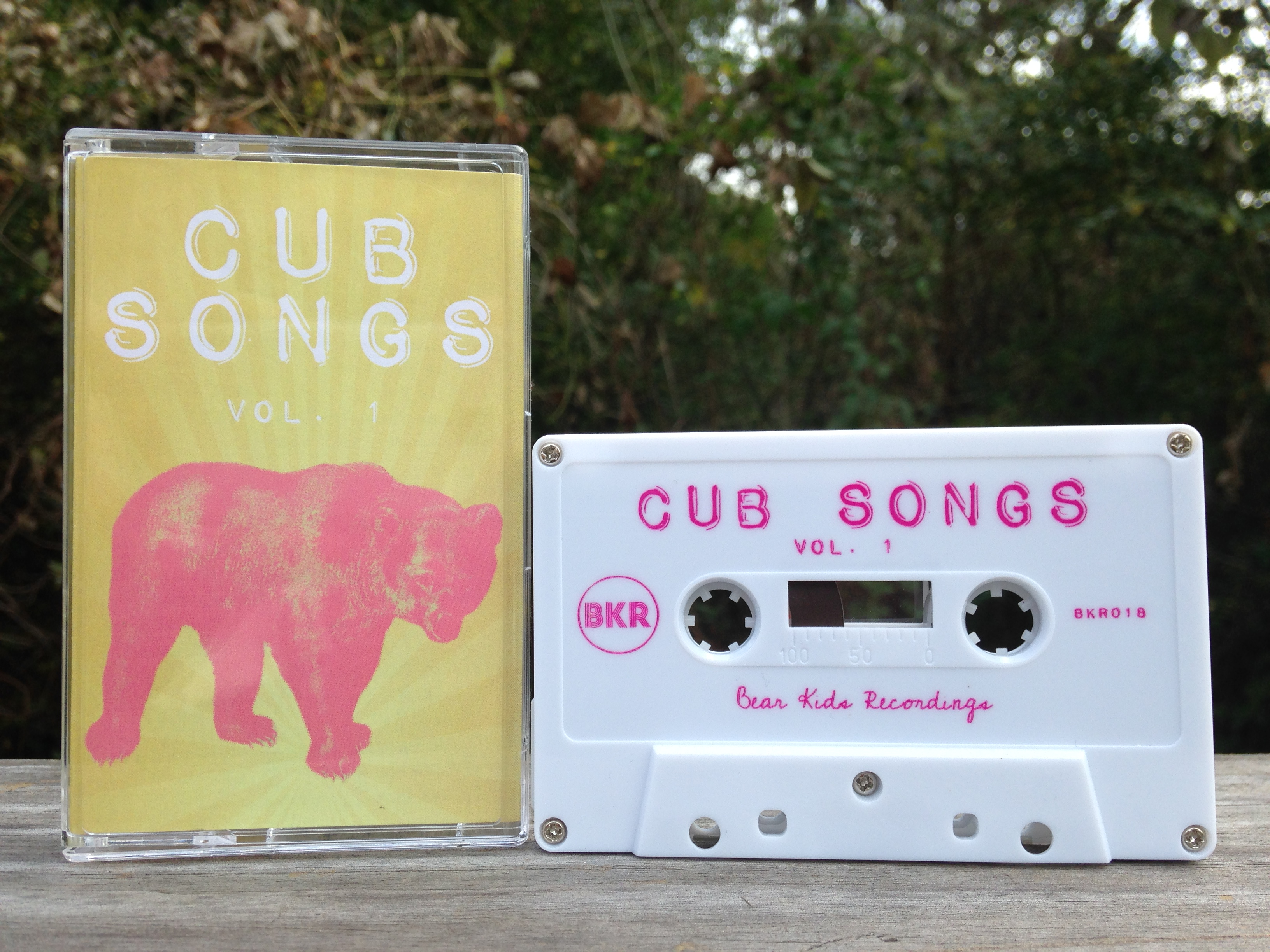Various Artists - <em>Cub Songs Vol. 1</em>