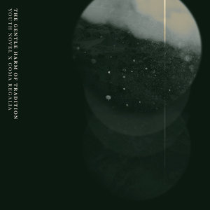 Youth Novel/Coma Regalia - The Gentle Harm of Tradition Split EP