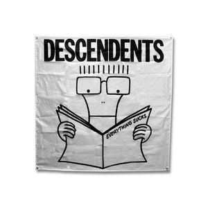 Descendents - Everything Sucks BANNER