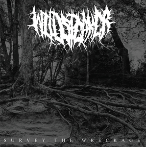 WILDSPEAKER 'Survey The Wreckage' LP