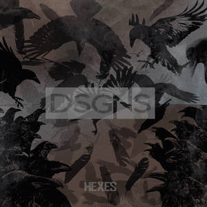 DSGNS-HEXES