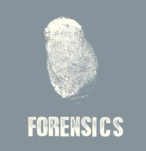 FORENSICS-On a Bridge Atop the Heap of Friend Who Jumped