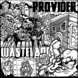 Provider-Wasteland