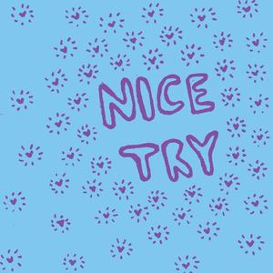 Nice Try - Nice Try