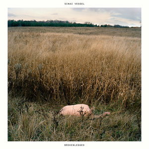 Sinai Vessel - Brokenlegged LP