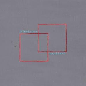 Pinegrove 'Cardinal' LP