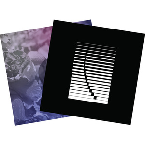 See Through Dresses - Horse of the Other World (LP2) + Self-Titled (LP1) Pre-Order