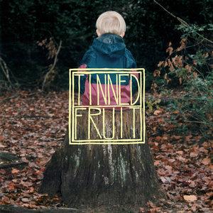 Tinned Fruit - Sorry Guys LP