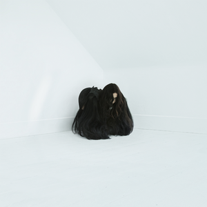 Chelsea Wolfe - Hiss Spun - CD - PREORDER