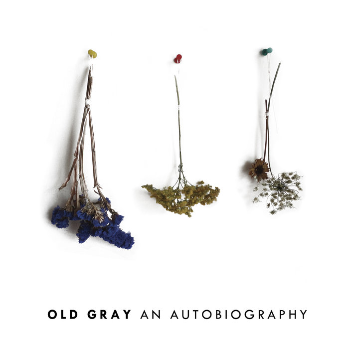 Old Gray - An Autobiography