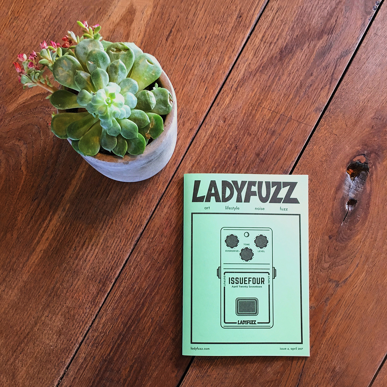 Ladyfuzz Issue #4