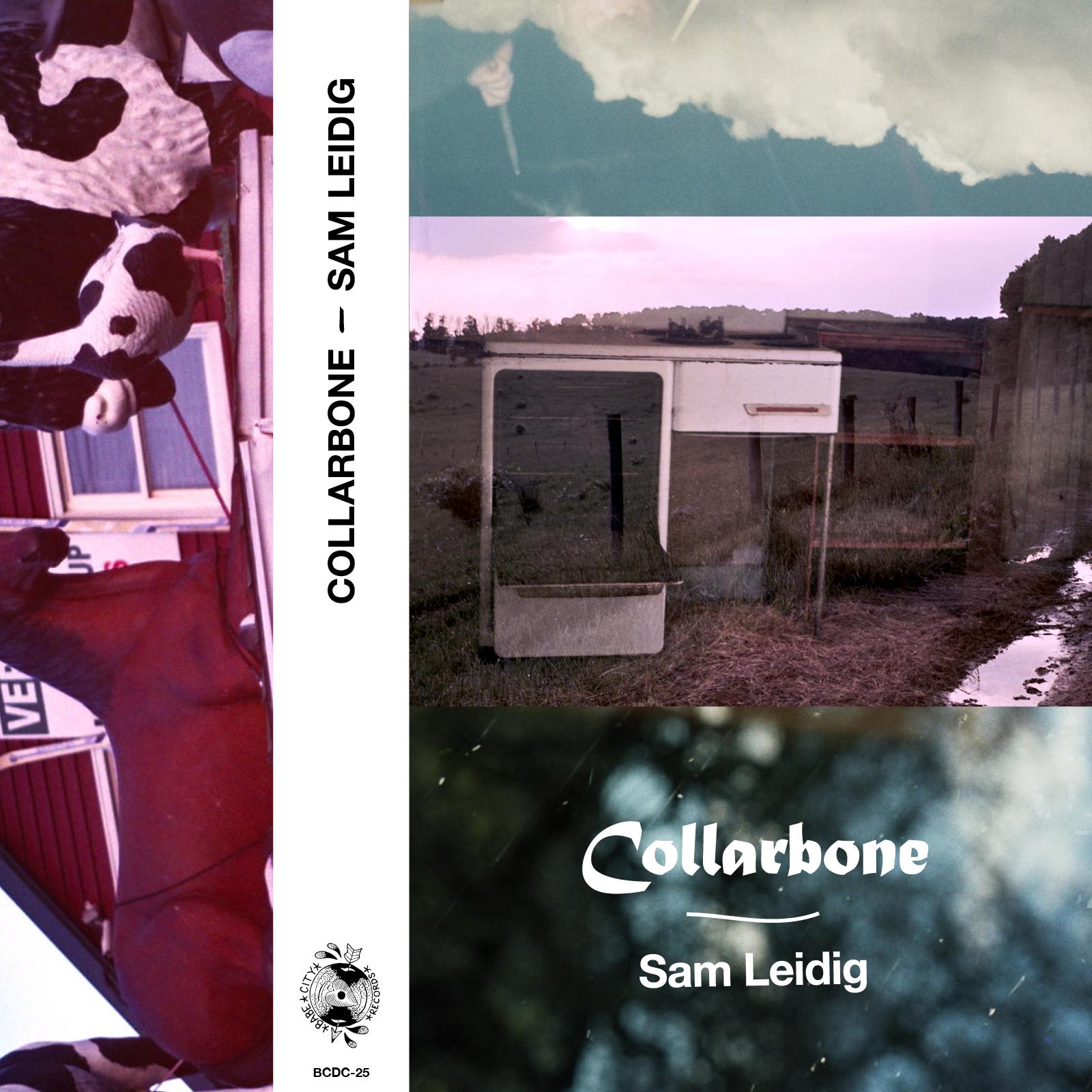 Sam Leidig - Collarbone