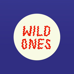 Wild Ones - Mirror Touch Button