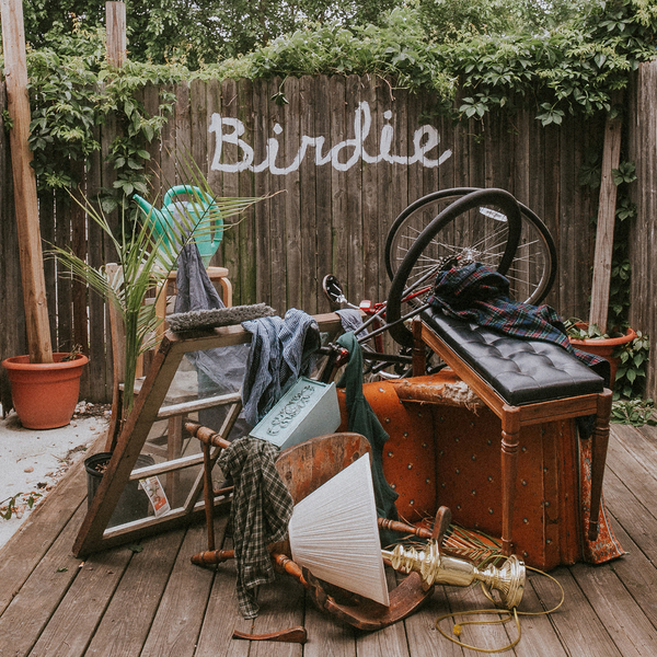 Slaughter Beach, Dog – Birdie -  LP/CD - PREORDER