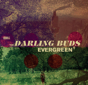 The Darling Buds - Evergreen 10