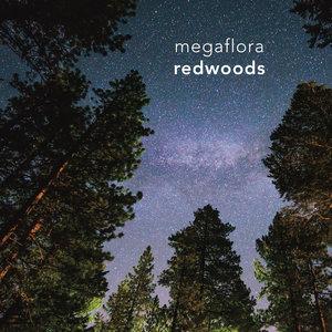 Megaflora - Redwoods LP