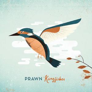 Prawn -Kingfisher
