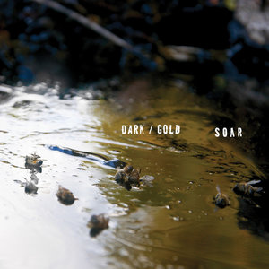 SOAR - Dark / Gold LP