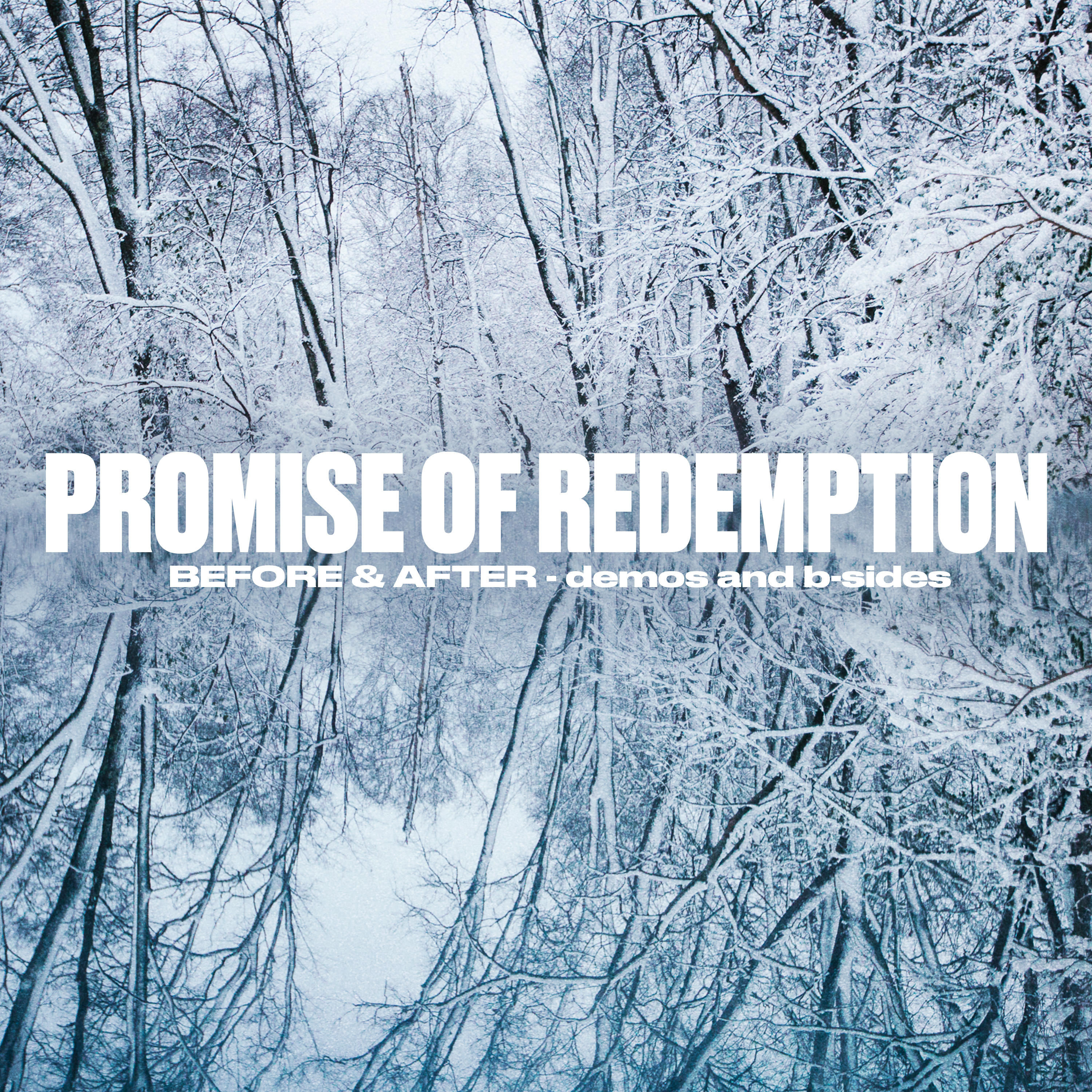 Promise of Redemption -