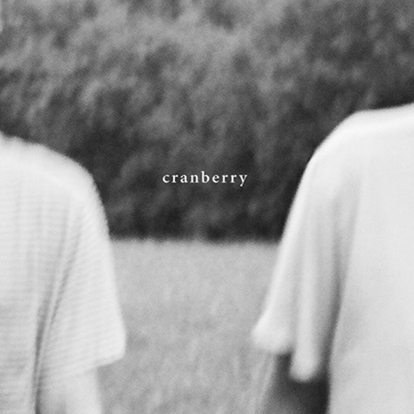 Hovvdy - Cranberry Cassette Tape