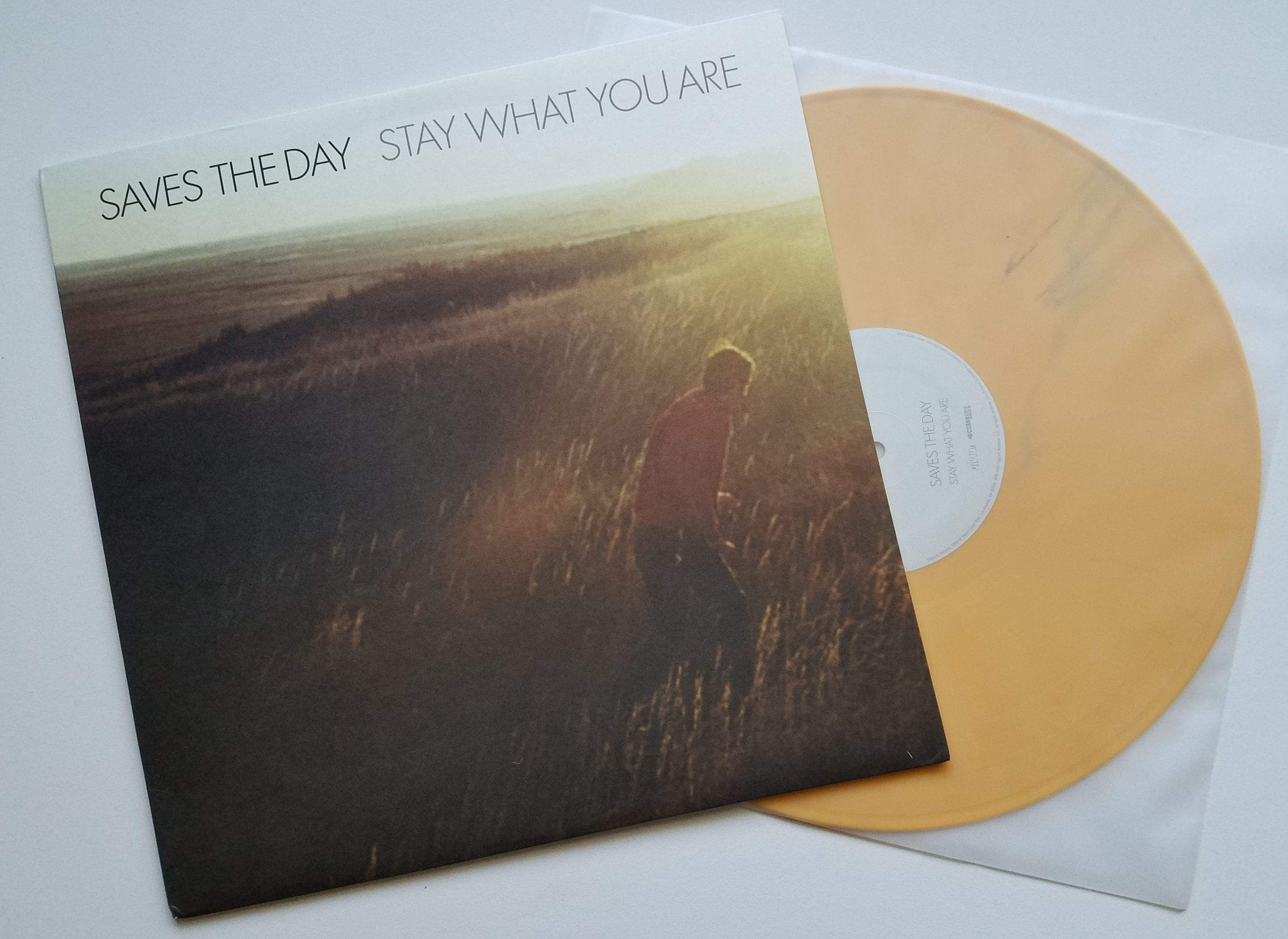 Saves The Day -