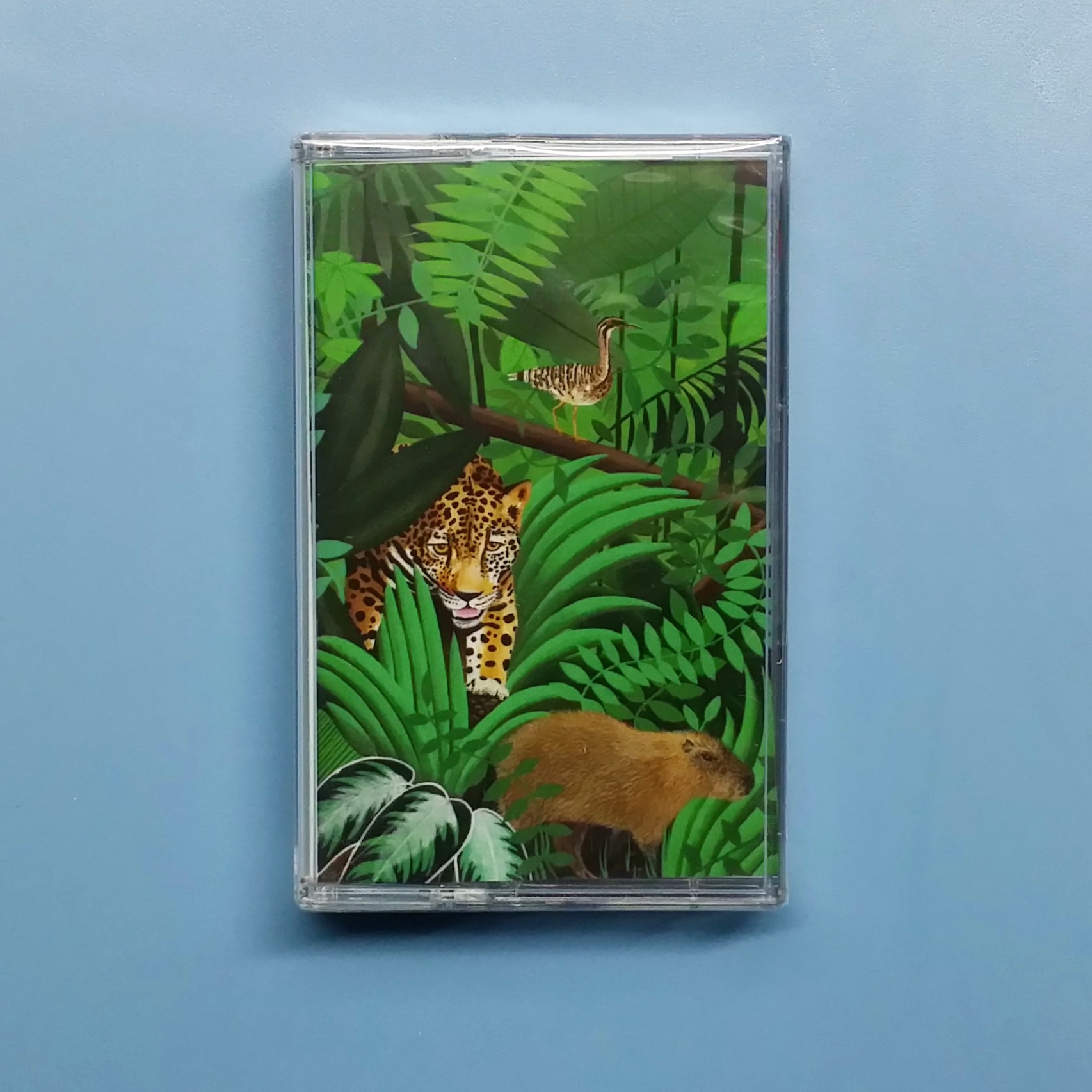 Turnover - Good Nature (Run for Cover Records)