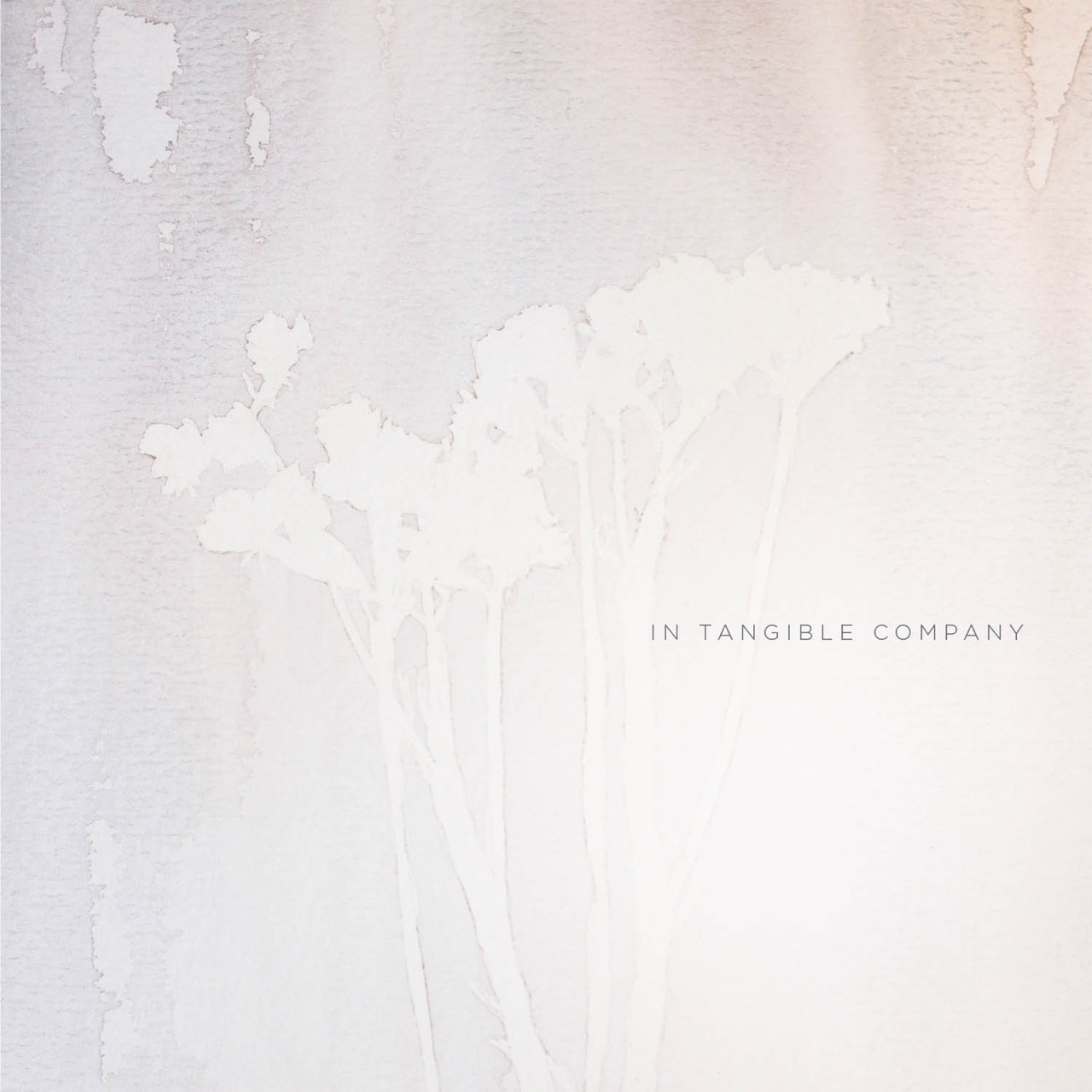 No Stranger - In Tangible Company